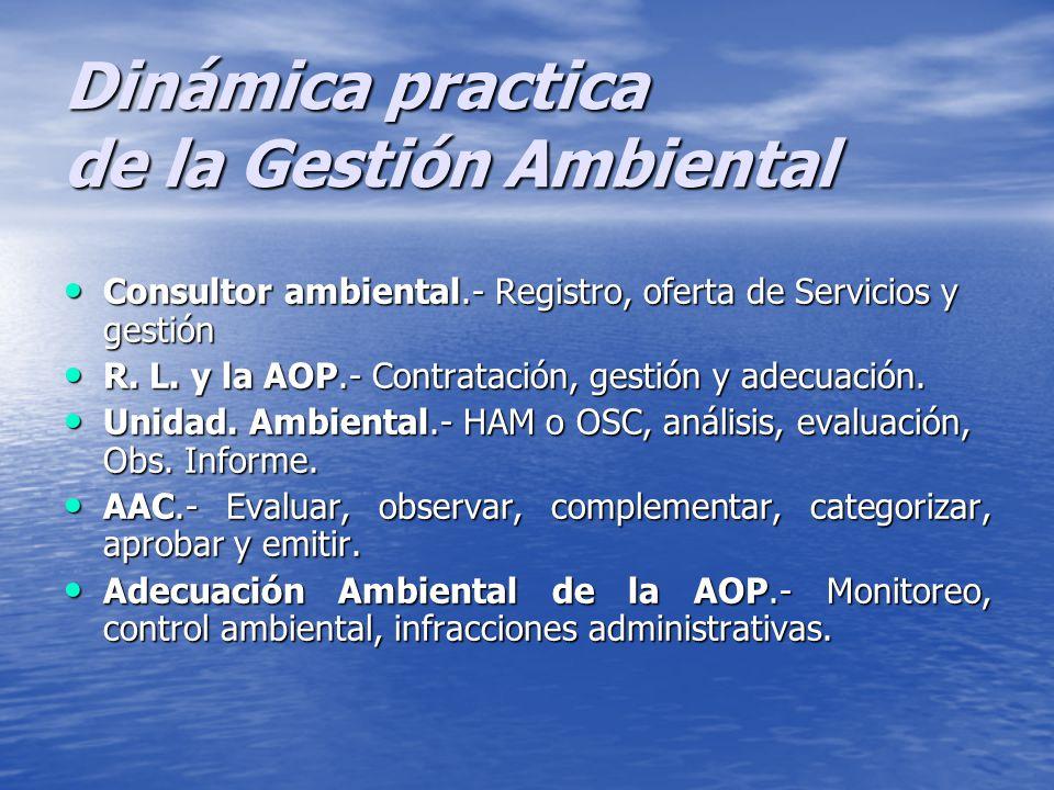 Dinámica practica de la Gestión Ambiental Consultor ambiental.- Registro, oferta de Servicios y gestión R.