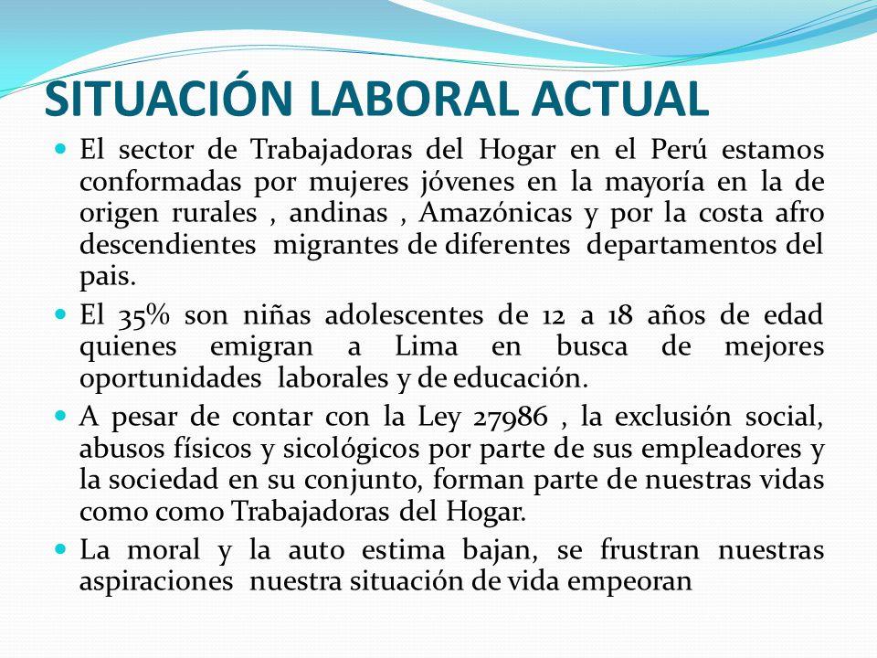 El sector de Trabajadoras del Hogar en el Perú estamos conformadas por mujeres jóvenes en la mayoría en la de origen rurales, andinas, Amazónicas y por la costa afro descendientes migrantes de diferentes departamentos del pais.