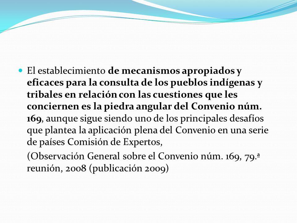 Instituciones representativas: Ecuador/México Con respecto a la determinación de las instituciones representativas, los órganos de control de la OIT han señalado que lo importante es que éstas sean el fruto de un proceso propio, interno de los pueblos indígenas (Consejo de Administración, 289.ª reunión, marzo de 2004.