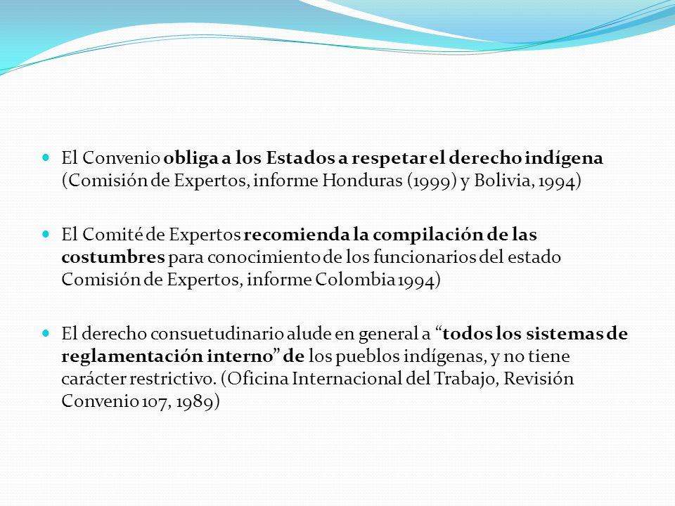 El Convenio obliga a los Estados a respetar el derecho indígena (Comisión de Expertos, informe Honduras (1999) y Bolivia, 1994) El Comité de Expertos recomienda la compilación de las costumbres para conocimiento de los funcionarios del estado Comisión de Expertos, informe Colombia 1994) El derecho consuetudinario alude en general a todos los sistemas de reglamentación interno de los pueblos indígenas, y no tiene carácter restrictivo.
