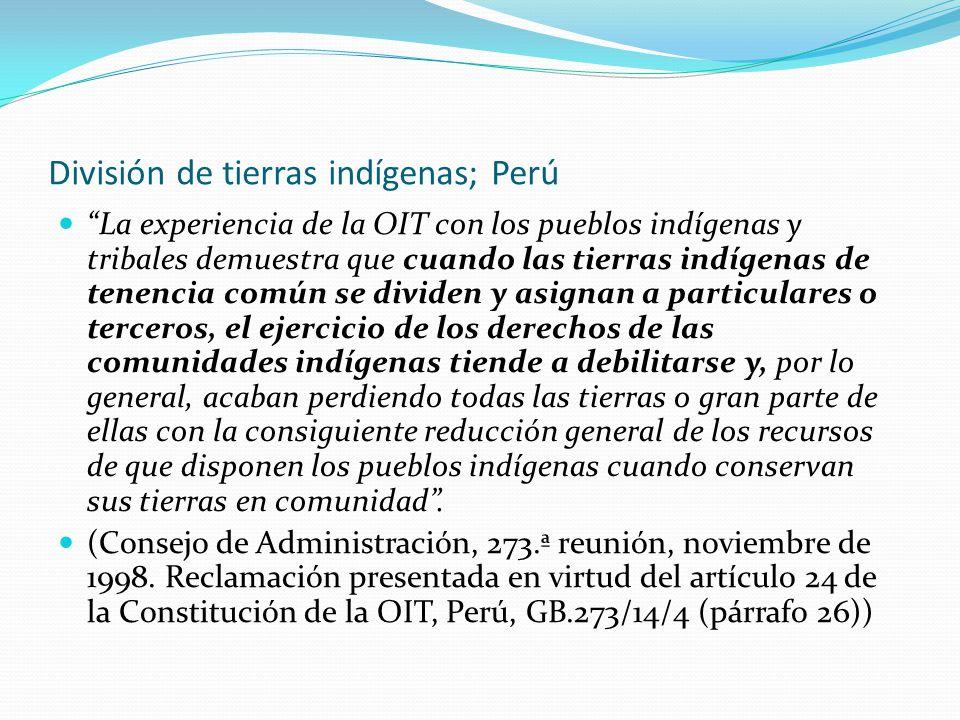 """División de tierras indígenas; Perú """"La experiencia de la OIT con los pueblos indígenas y tribales demuestra que cuando las tierras indígenas de tenen"""