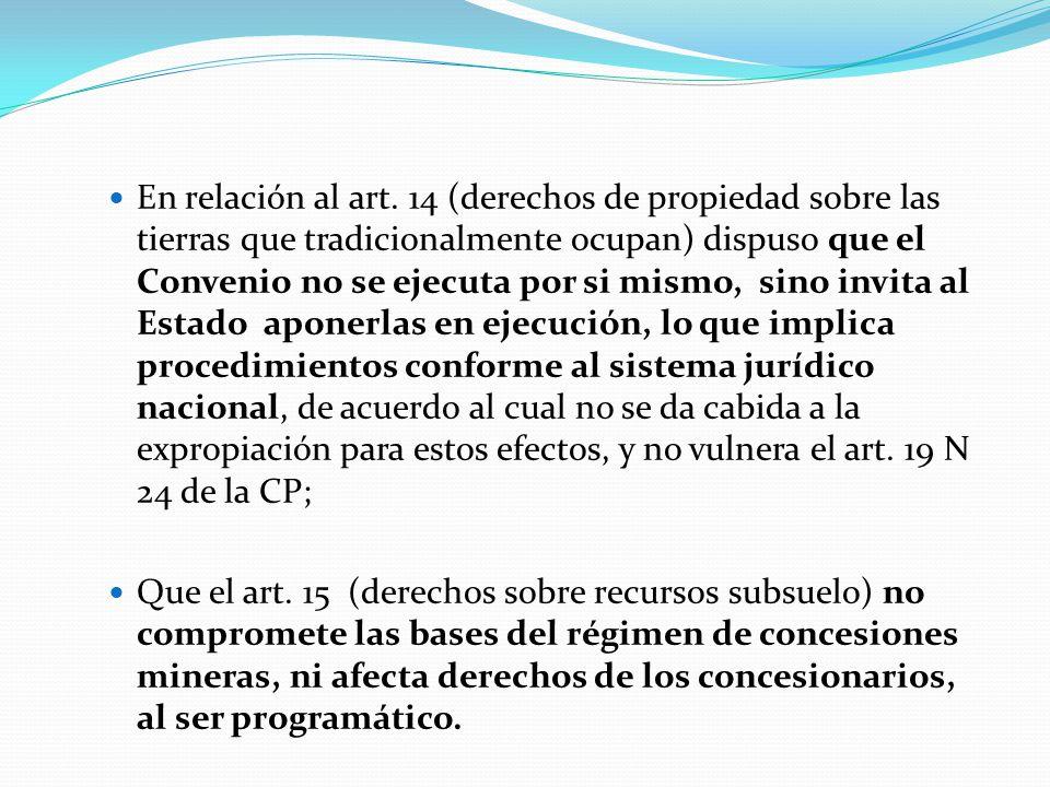 En relación al art. 14 (derechos de propiedad sobre las tierras que tradicionalmente ocupan) dispuso que el Convenio no se ejecuta por si mismo, sino