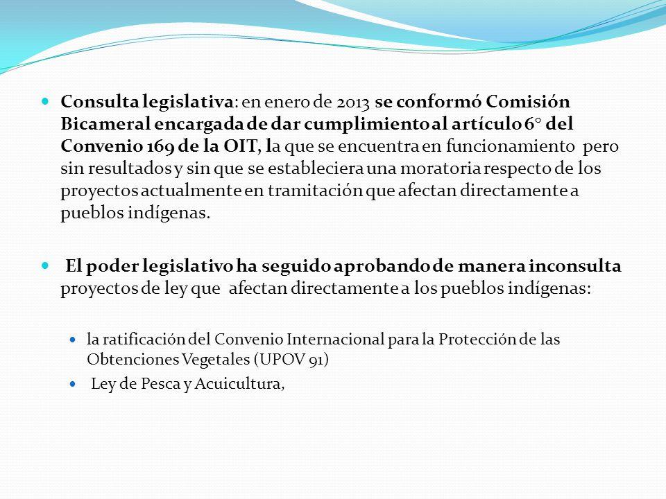 Consulta legislativa: en enero de 2013 se conformó Comisión Bicameral encargada de dar cumplimiento al artículo 6° del Convenio 169 de la OIT, la que se encuentra en funcionamiento pero sin resultados y sin que se estableciera una moratoria respecto de los proyectos actualmente en tramitación que afectan directamente a pueblos indígenas.