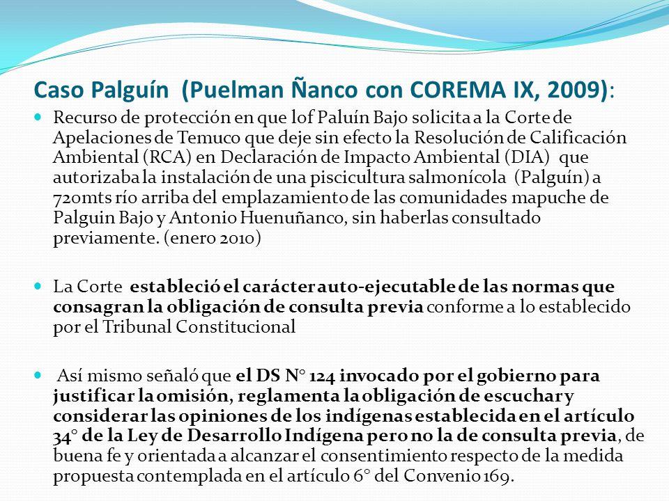 Recurso de protección en que lof Paluín Bajo solicita a la Corte de Apelaciones de Temuco que deje sin efecto la Resolución de Calificación Ambiental