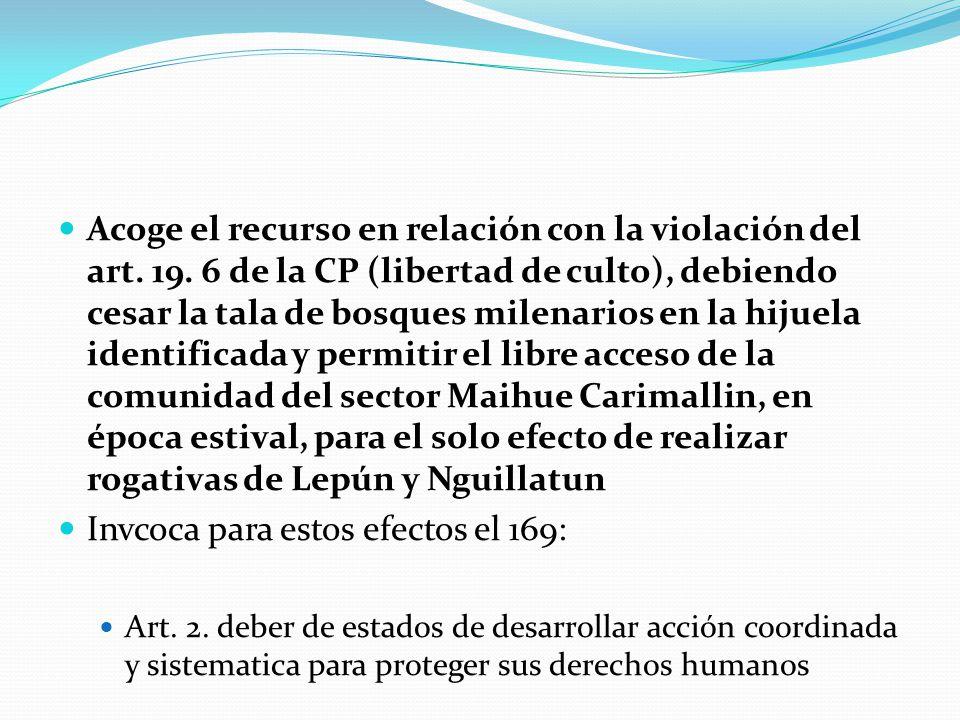 Acoge el recurso en relación con la violación del art. 19. 6 de la CP (libertad de culto), debiendo cesar la tala de bosques milenarios en la hijuela