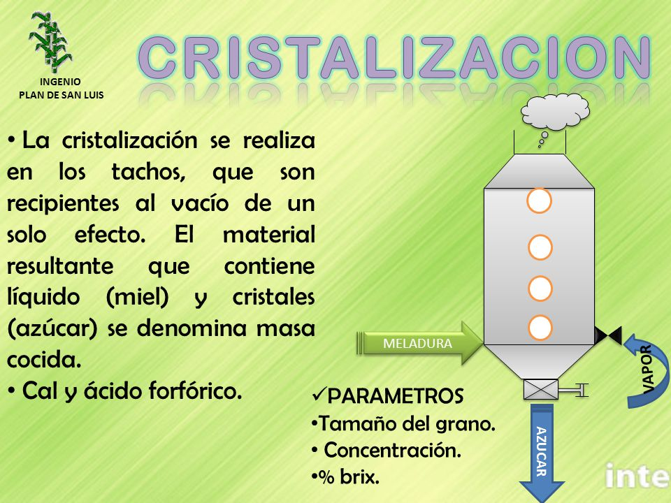 MELADURA VAPOR AZUCAR La cristalización se realiza en los tachos, que son recipientes al vacío de un solo efecto. El material resultante que contiene