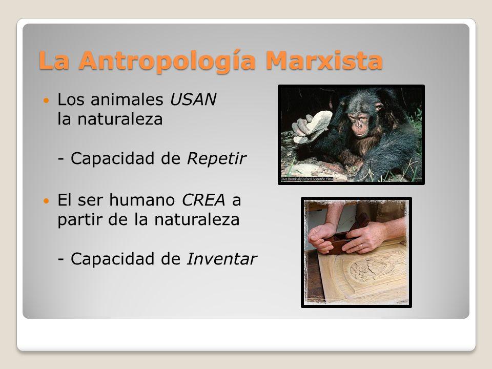 La Antropología Marxista La Antropología Marxista Los animales USAN la naturaleza - Capacidad de Repetir El ser humano CREA a partir de la naturaleza - Capacidad de Inventar