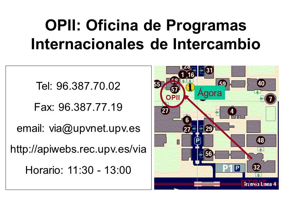 OPII: Oficina de Programas Internacionales de Intercambio Tel: 96.387.70.02 Fax: 96.387.77.19 email: via@upvnet.upv.es http://apiwebs.rec.upv.es/via H