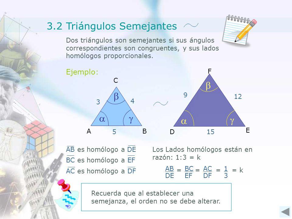Dos triángulos son semejantes si sus ángulos correspondientes son congruentes, y sus lados homólogos proporcionales.