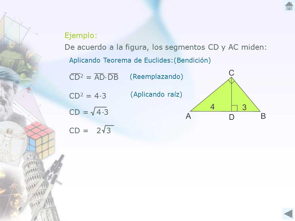 De acuerdo a la figura, los segmentos CD y AC miden: Ejemplo: Aplicando Teorema de Euclides:(Bendición) CD 2 = AD DB∙ (Reemplazando) CD 2 = 4 3∙ (Aplicando raíz) CD = 4 3∙ CD = 2 3