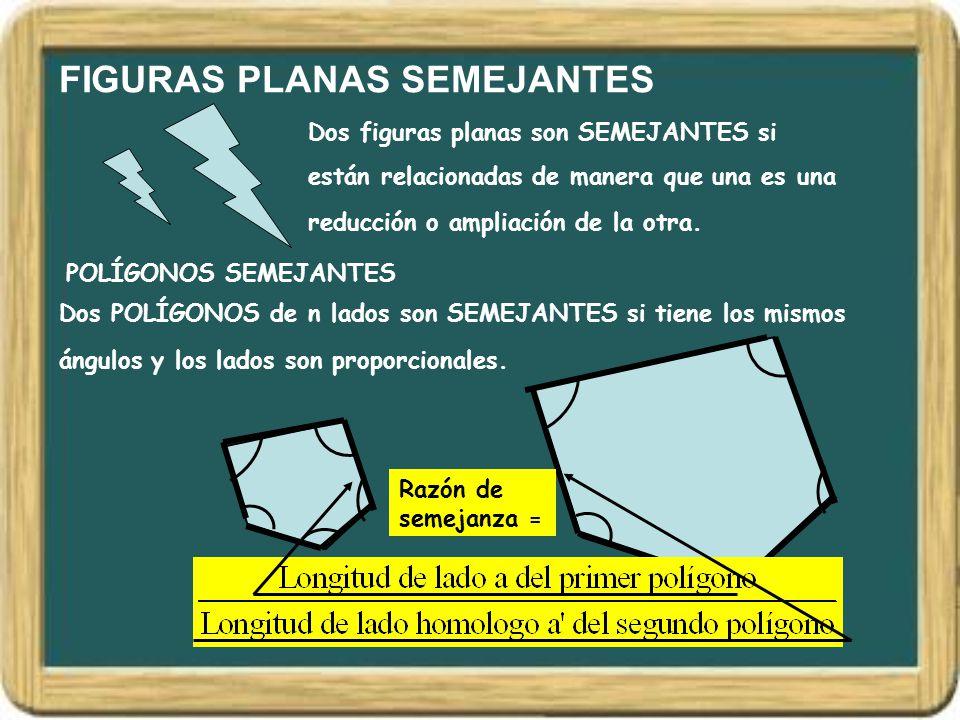 FIGURAS PLANAS SEMEJANTES Dos figuras planas son SEMEJANTES si están relacionadas de manera que una es una reducción o ampliación de la otra. POLÍGONO