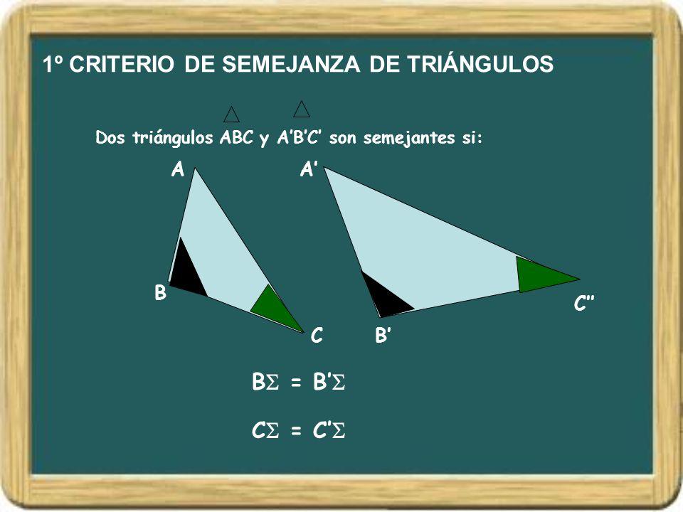 1º CRITERIO DE SEMEJANZA DE TRIÁNGULOS Dos triángulos ABC y A'B'C' son semejantes si: A B C A' B' C'' B  = B'  C  = C' 