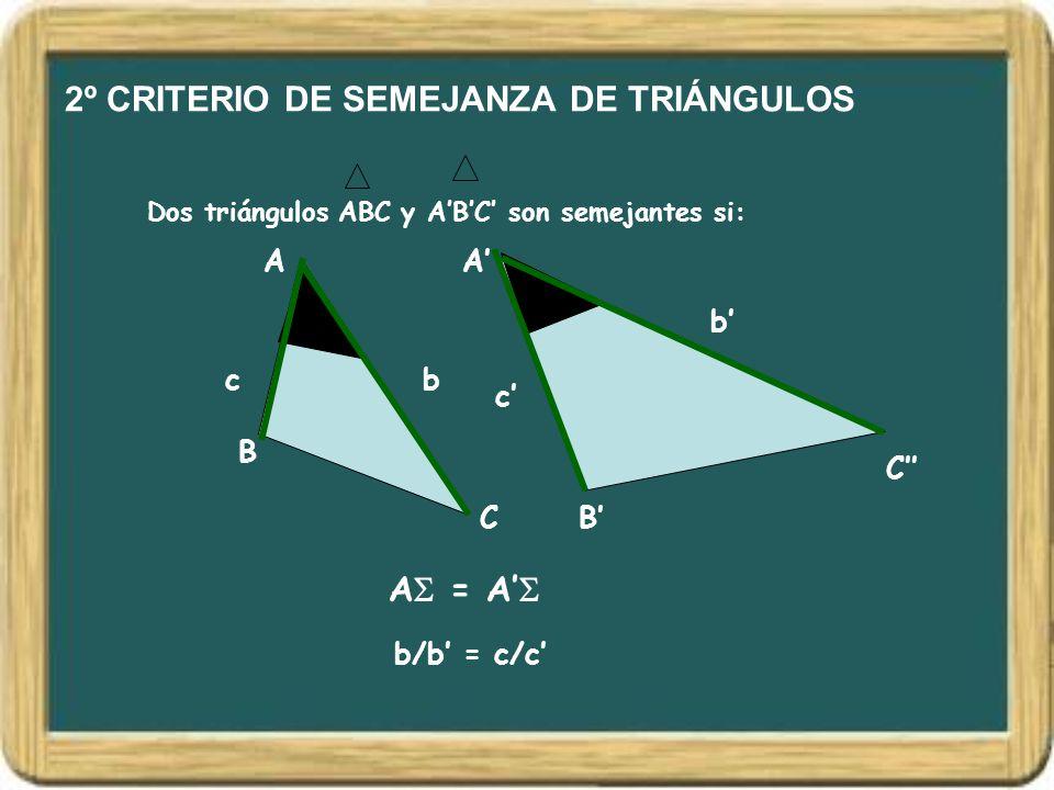 2º CRITERIO DE SEMEJANZA DE TRIÁNGULOS Dos triángulos ABC y A'B'C' son semejantes si: A B C A' B' C'' A  = A'  bc b' c' b/b' = c/c'