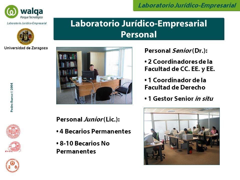 Universidad de Zaragoza Laboratorio Jurídico-Empresarial Pedro Bueso © 2004 Laboratorio Jurídico-Empresarial Personal Personal Senior (Dr.): 2 Coordin