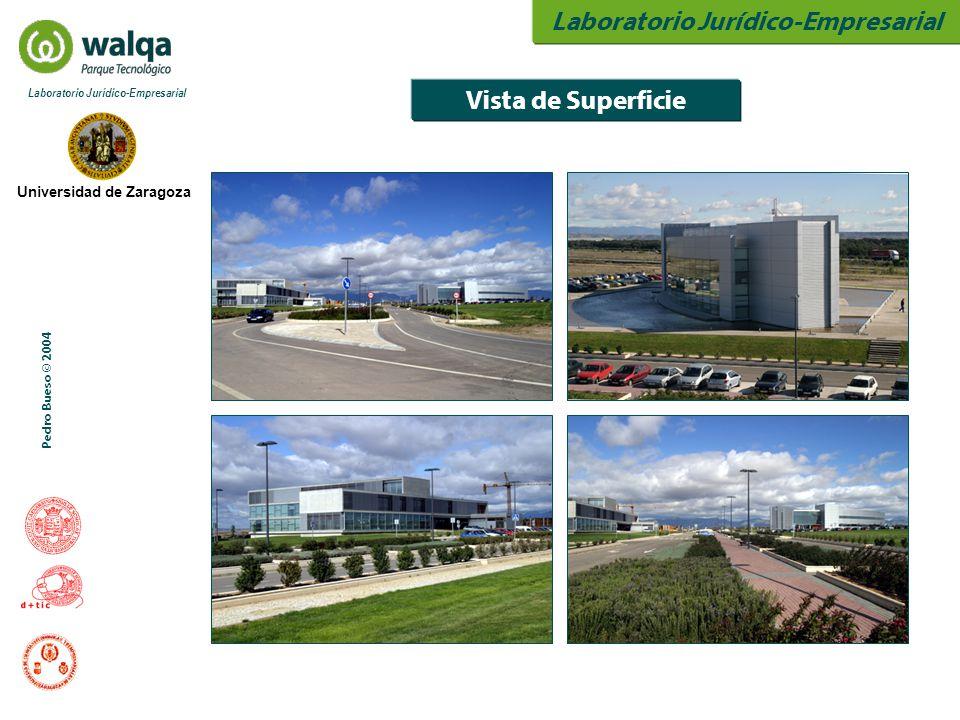 Laboratorio Jurídico-Empresarial Universidad de Zaragoza Laboratorio Jurídico-Empresarial Pedro Bueso © 2004 Vista de Superficie