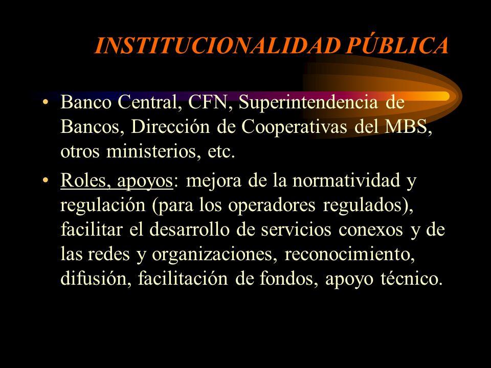 OTRAS NECESIDADES DE APOYO Para los institucionales no regulados: facilitación de fondos, apoyo técnico.