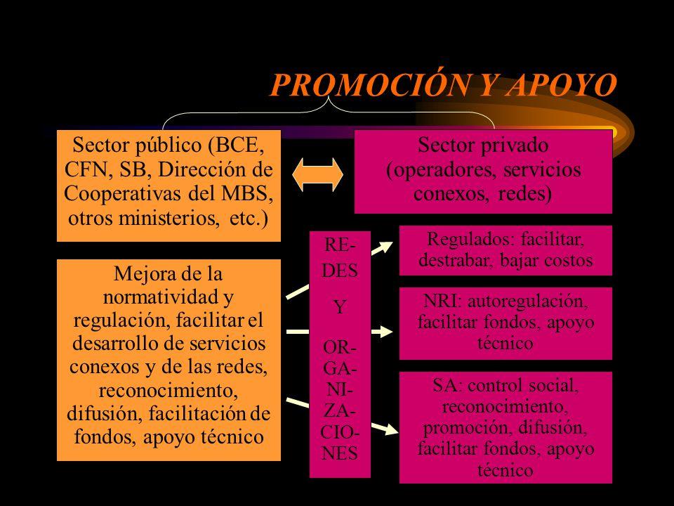 INSTITUCIONALIDAD PÚBLICA Banco Central, CFN, Superintendencia de Bancos, Dirección de Cooperativas del MBS, otros ministerios, etc.