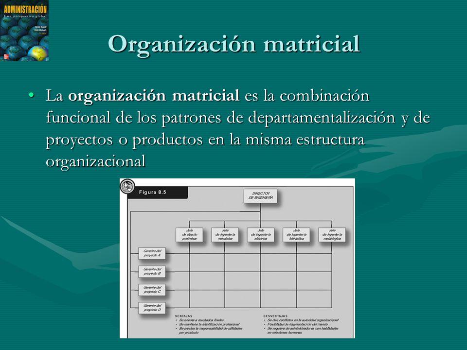Organización matricial La organización matricial es la combinación funcional de los patrones de departamentalización y de proyectos o productos en la misma estructura organizacionalLa organización matricial es la combinación funcional de los patrones de departamentalización y de proyectos o productos en la misma estructura organizacional