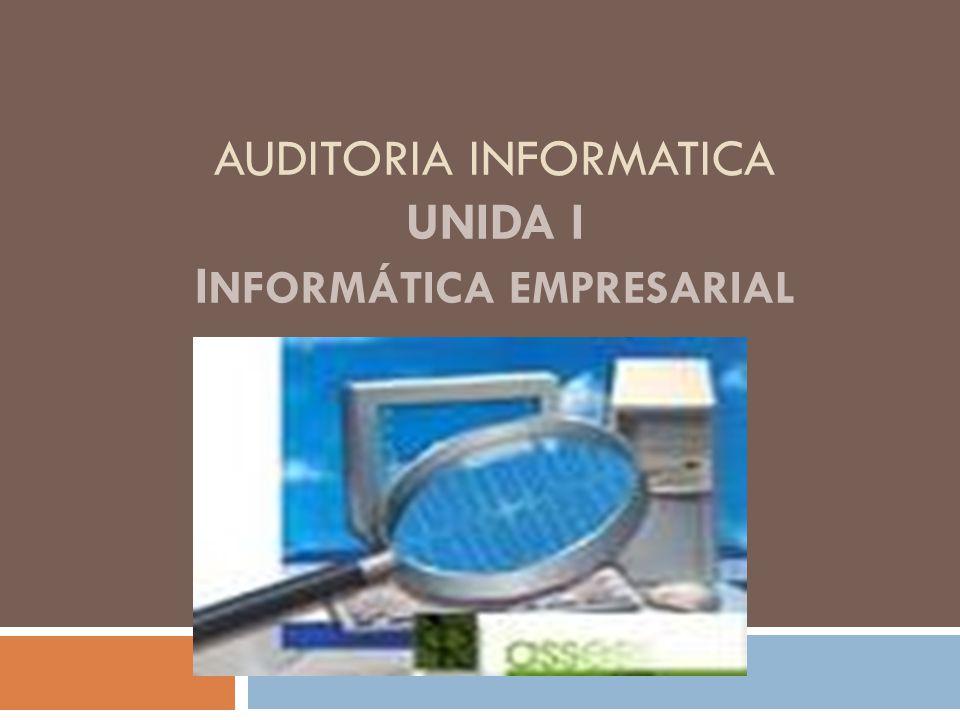 AUDITORIA INFORMATICA UNIDA I I NFORMÁTICA EMPRESARIAL