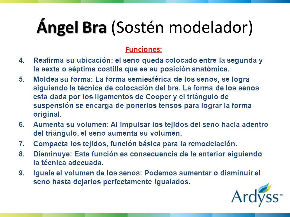Ángel Bra Ángel Bra (Sostén modelador) Funciones: 4.Reafirma su ubicación: el seno queda colocado entre la segunda y la sexta o séptima costilla que es su posición anatómica.