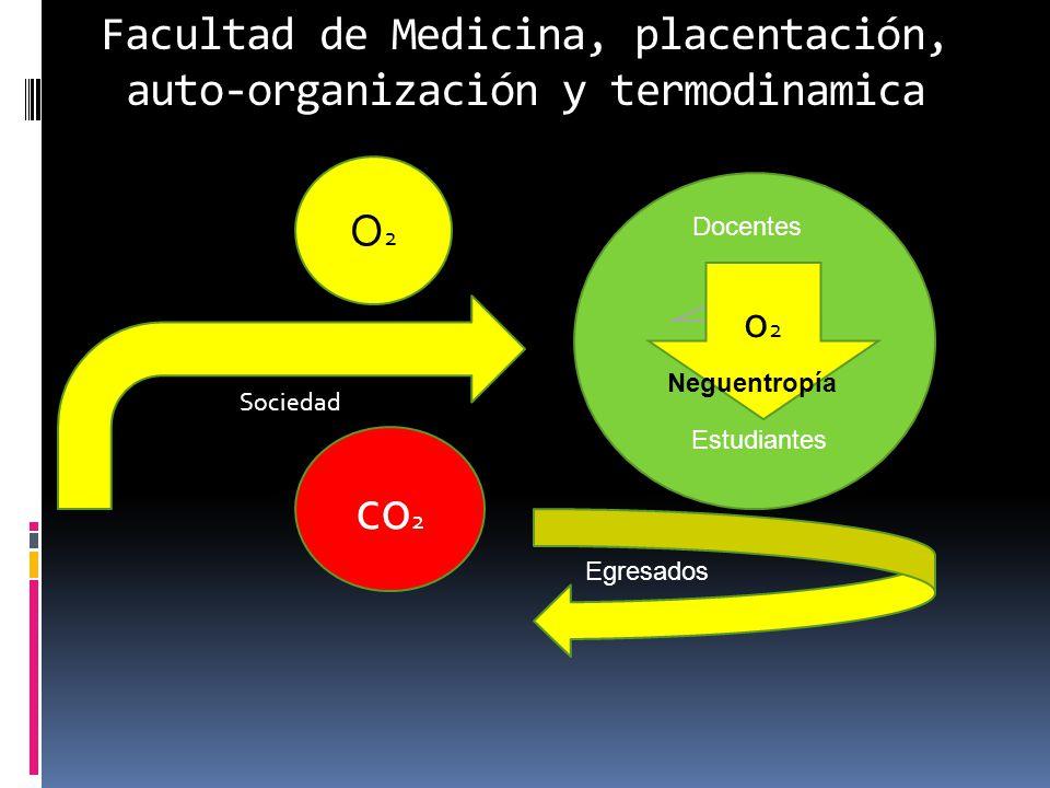 Facultad de Medicina, placentación, auto-organización y termodinamica O2O2 co 2 Sociedad o2o2 Docentes Estudiantes Egresados Neguentropía