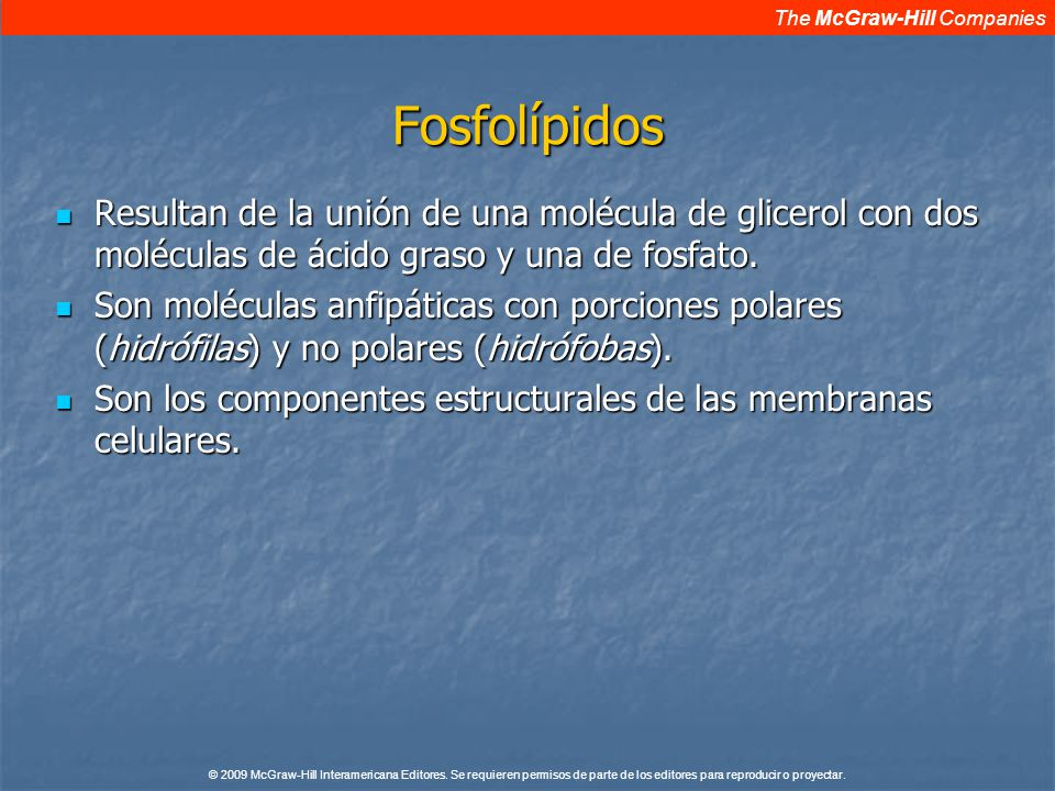 The McGraw-Hill Companies © 2009 McGraw-Hill Interamericana Editores.