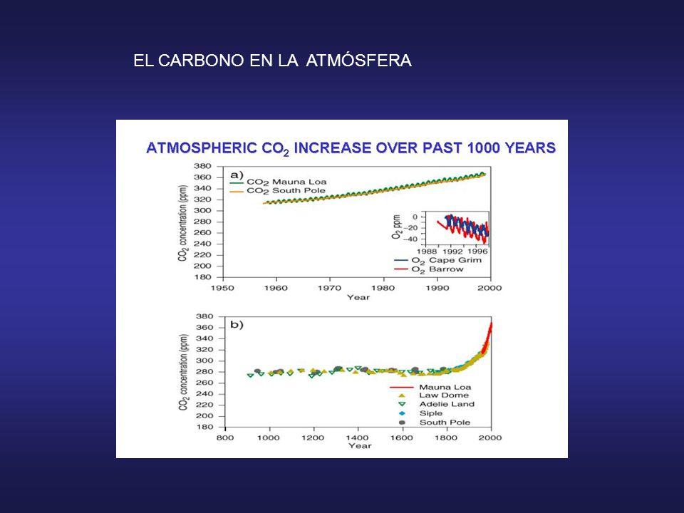Cambio Climático: Problema Global El desarrollo industrial La pérdida de Biodiversidad El cambio de uso de Suelo Los eventos Extremos y las pérdidas Económicas