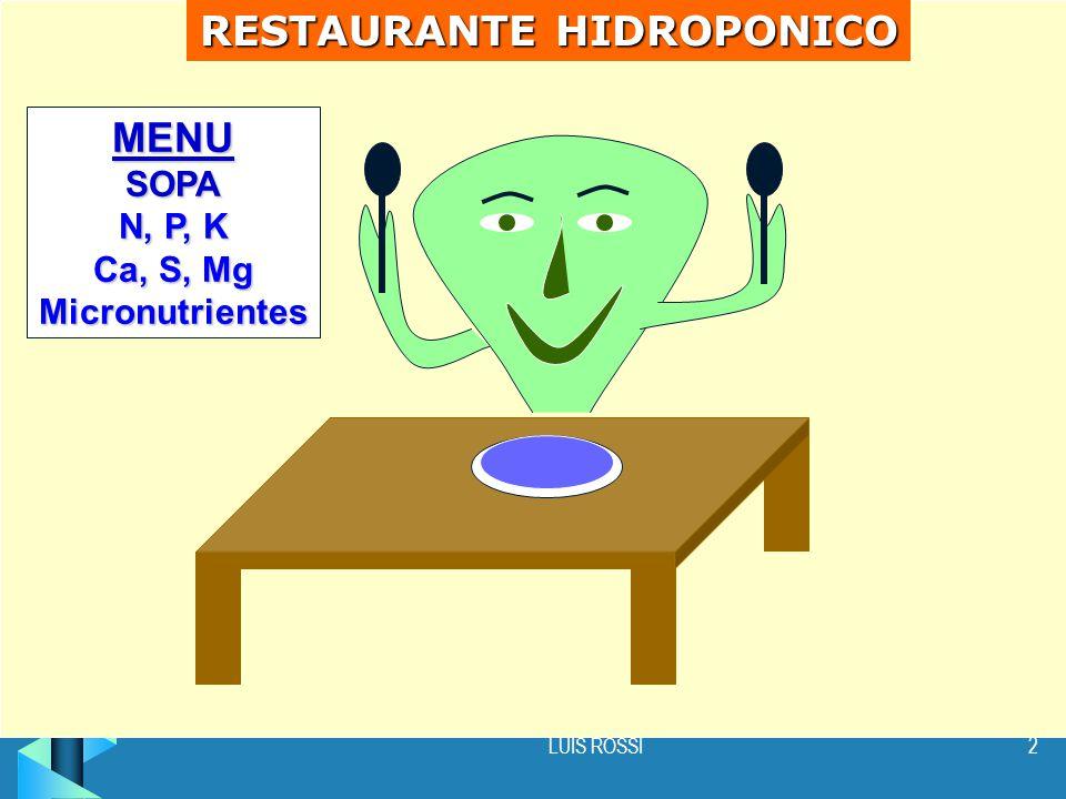 LUIS ROSSI2 RESTAURANTE HIDROPONICO MENUSOPA N, P, K Ca, S, Mg Micronutrientes