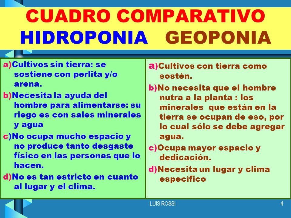 LUIS ROSSI4 CUADRO COMPARATIVO HIDROPONIA GEOPONIA a)Cultivos sin tierra: se sostiene con perlita y/o arena.