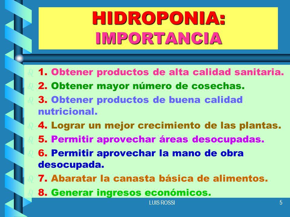 LUIS ROSSI5 HIDROPONIA: IMPORTANCIA b b 1.Obtener productos de alta calidad sanitaria.