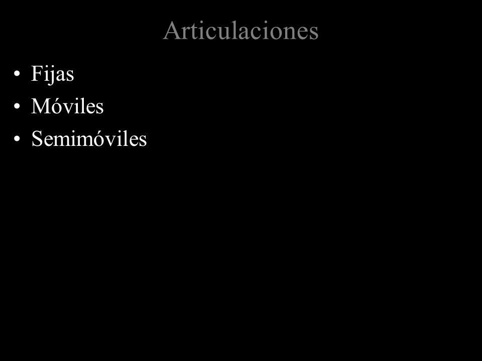 Articulaciones Fijas Móviles Semimóviles