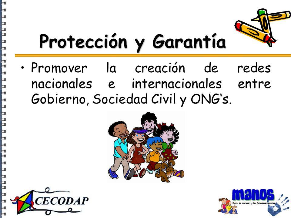 Protección y Garantía Promover la creación de redes nacionales e internacionales entre Gobierno, Sociedad Civil y ONG's.