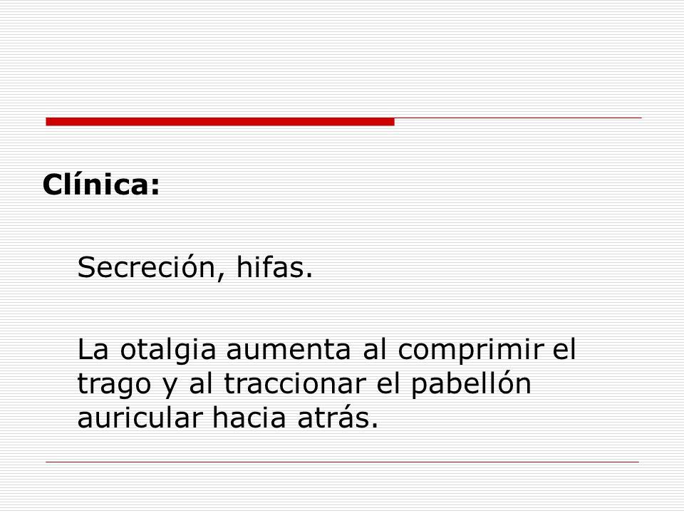 Clínica: Secreción, hifas.