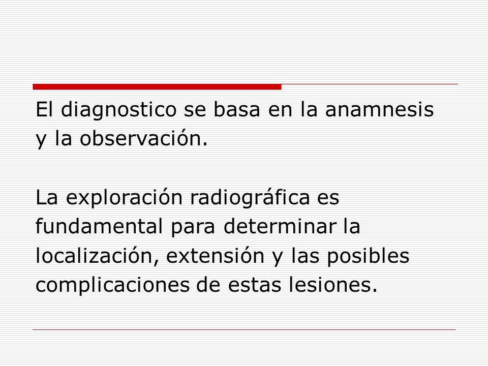 El diagnostico se basa en la anamnesis y la observación.
