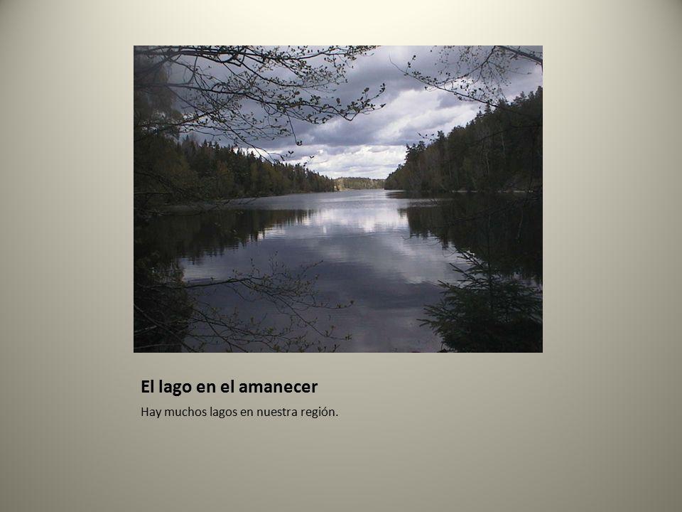 El lago en el amanecer Hay muchos lagos en nuestra región.