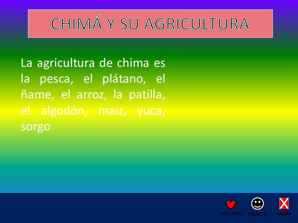 La agricultura de chima es la pesca, el plátano, el ñame, el arroz, la patilla, el algodón, maíz, yuca, sorgo SALIDA CREDITO PAG.