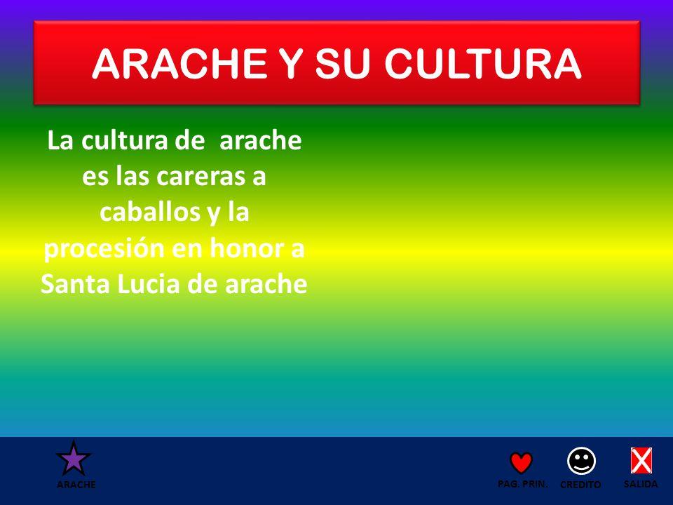 ARACHE Y SU CULTURA La cultura de arache es las careras a caballos y la procesión en honor a Santa Lucia de arache SALIDA CREDITO PAG.
