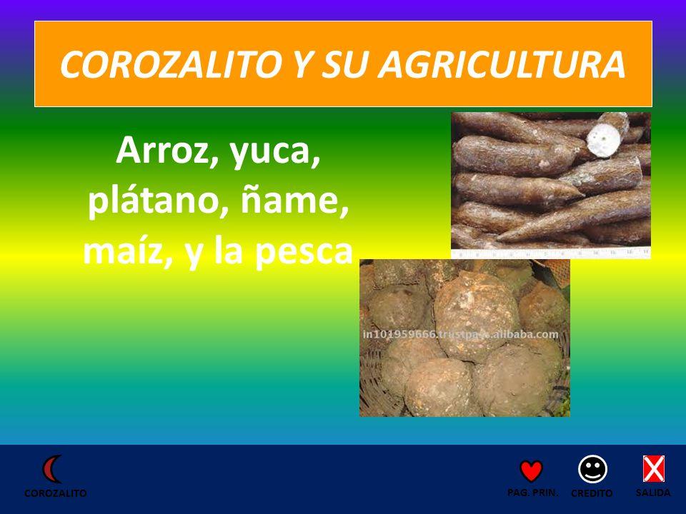 COROZALITO Y SU AGRICULTURA Arroz, yuca, plátano, ñame, maíz, y la pesca SALIDA CREDITO PAG.