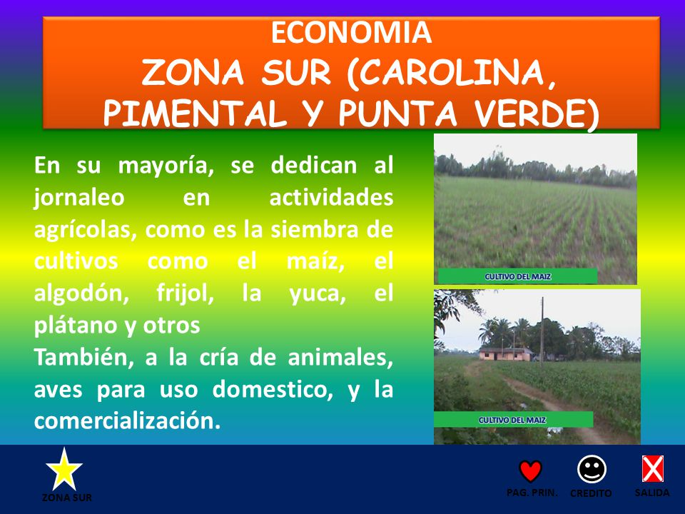 ECONOMIA ZONA SUR (CAROLINA, PIMENTAL Y PUNTA VERDE) SALIDA CREDITO PAG.