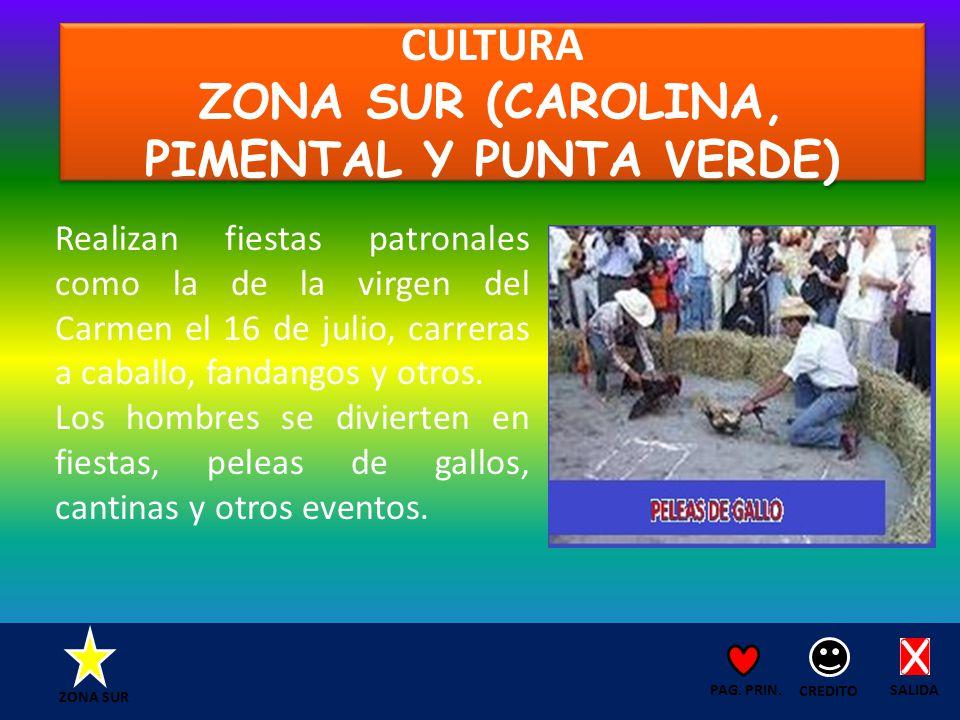 CULTURA ZONA SUR (CAROLINA, PIMENTAL Y PUNTA VERDE) SALIDA CREDITO PAG.
