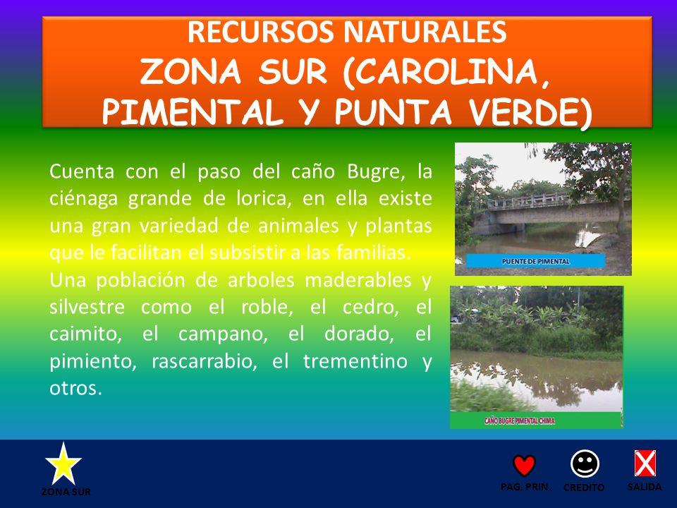RECURSOS NATURALES ZONA SUR (CAROLINA, PIMENTAL Y PUNTA VERDE) SALIDA CREDITO PAG.