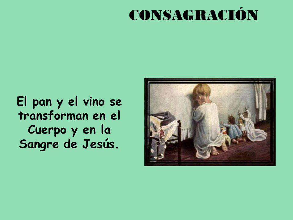 El pan y el vino se transforman en el Cuerpo y en la Sangre de Jesús. CONSAGRACIÓN