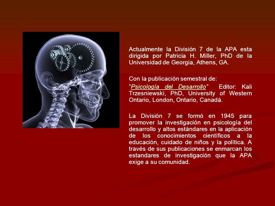 Actualmente la División 7 de la APA esta dirigida por Patricia H. Miller, PhD de la Universidad de Georgia, Athens, GA. Con la publicación semestral d