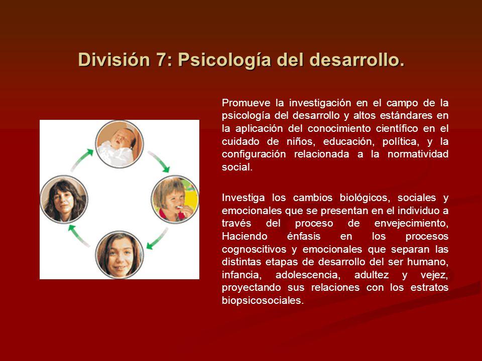 División 7: Psicología del desarrollo. Promueve la investigación en el campo de la psicología del desarrollo y altos estándares en la aplicación del c