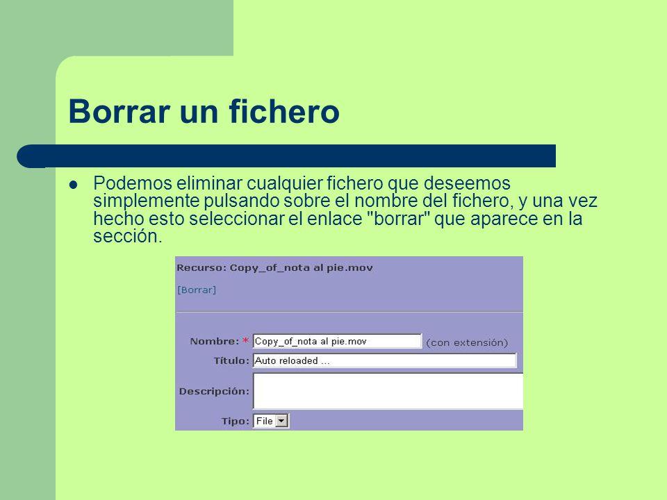 Borrar un fichero Podemos eliminar cualquier fichero que deseemos simplemente pulsando sobre el nombre del fichero, y una vez hecho esto seleccionar el enlace borrar que aparece en la sección.