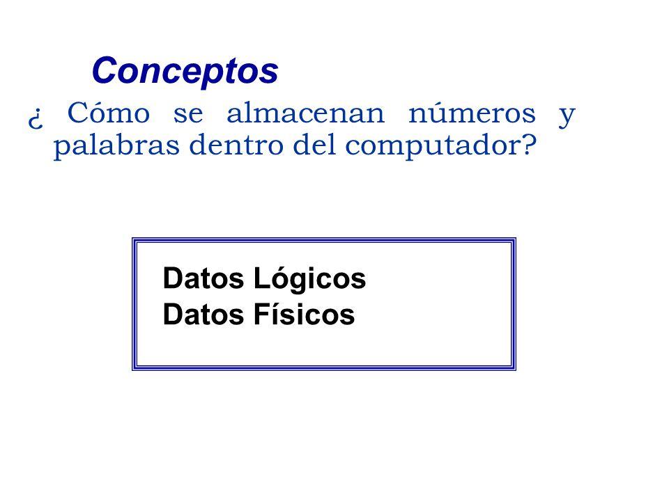 ¿ Cómo se almacenan números y palabras dentro del computador? Conceptos Datos Lógicos Datos Físicos