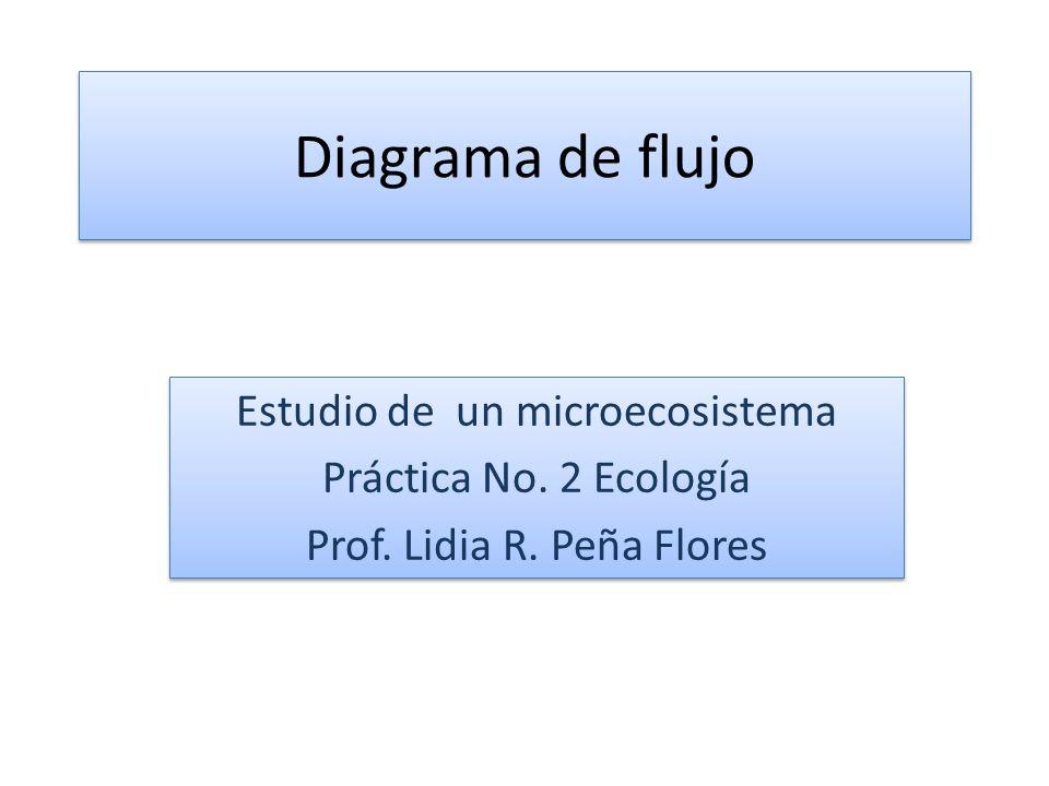 Diagrama de flujo Estudio de un microecosistema Práctica No. 2 Ecología Prof. Lidia R. Peña Flores Estudio de un microecosistema Práctica No. 2 Ecolog