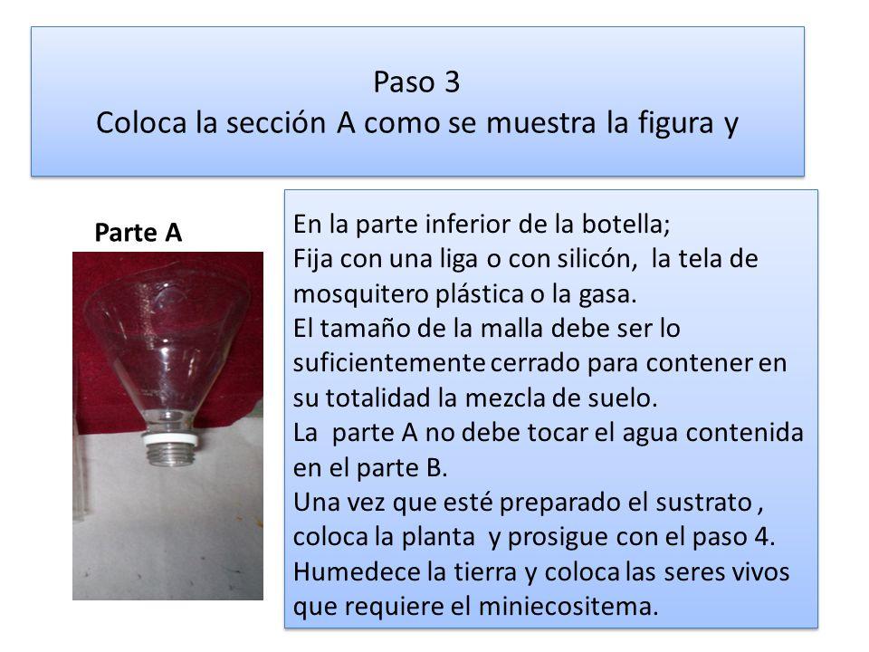 Paso 3 Coloca la sección A como se muestra la figura y Parte A En la parte inferior de la botella; Fija con una liga o con silicón, la tela de mosquit