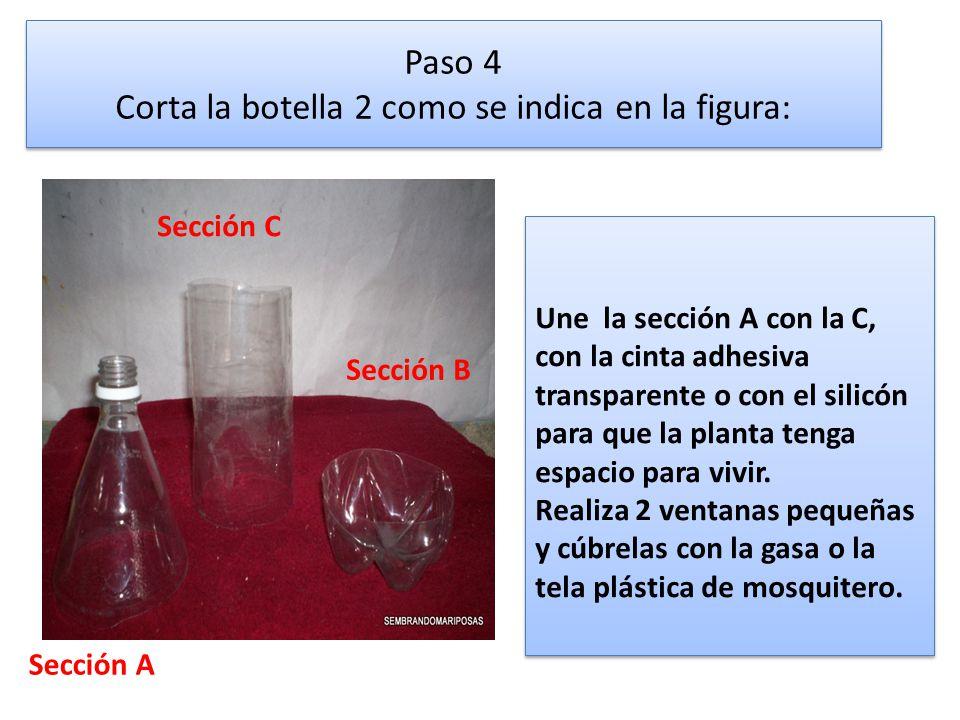 Paso 4 Corta la botella 2 como se indica en la figura: Une la sección A con la C, con la cinta adhesiva transparente o con el silicón para que la plan