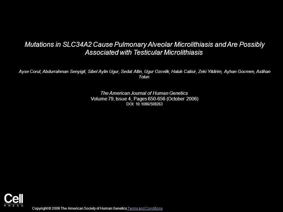 Mutations in SLC34A2 Cause Pulmonary Alveolar Microlithiasis and Are Possibly Associated with Testicular Microlithiasis Ayse Corut, Abdurrahman Senyigit, Sibel Aylin Ugur, Sedat Altin, Ugur Ozcelik, Haluk Calisir, Zeki Yildirim, Ayhan Gocmen, Aslihan Tolun The American Journal of Human Genetics Volume 79, Issue 4, Pages 650-656 (October 2006) DOI: 10.1086/508263 Copyright © 2006 The American Society of Human Genetics Terms and Conditions Terms and Conditions